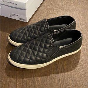 Women's Steve Madden Ecentrcq Shoes